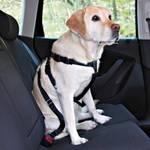 Uprząż Nobby bezpečnostní pro psa do auta XL