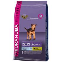 Granule Eukanuba Puppy & Junior Large Breed 15 kg