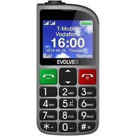 Evolveo EasyPhone FM (EP-800-FMS) strieborný