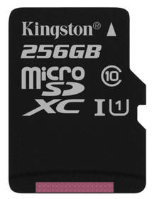 Kingston Canvas Select MicroSDXC 256GB UHS-I U1 (80R/10W) (SDCS/256GBSP)