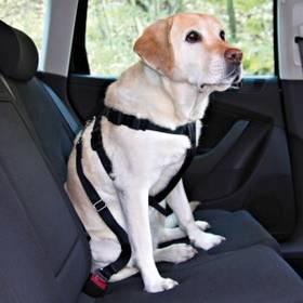 Nobby bezpečnostní pro psa do auta L