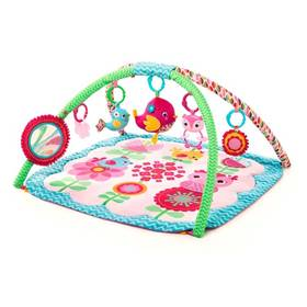 Bright Starts Bloomin' Birdies™ Activity Gym