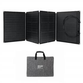 Ecoflow 110W