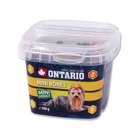Pochúťka Ontario Snack Mini Bones 100g