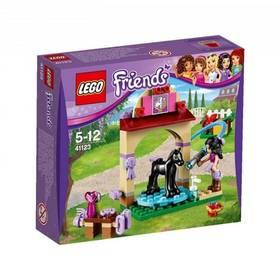 Lego® Friends 41123 Mytí hříbátka