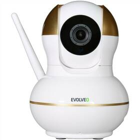 Evolveo Securix s internetovou kamerou (ALM500-IP-CAM)