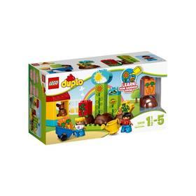 LEGO® DUPLO 10819 Moje první zahrádka