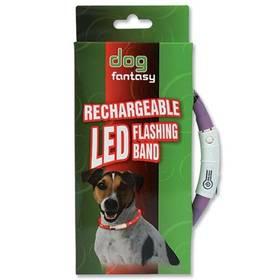 Obojok Dog Fantasy LED světelný 45cm fialový