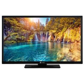 Televize GoGEN TVF 39P471T černá