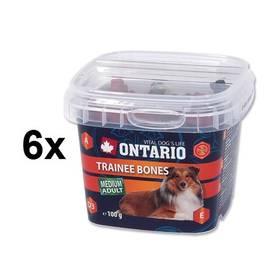Ontario Snack Trainee Bones 6 x 100g