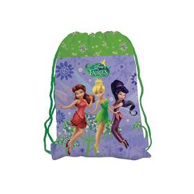 P + P Karton Disney Fairies