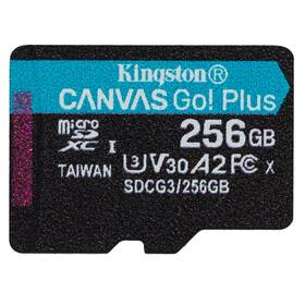 Kingston Canvas Go! Plus MicroSDXC 256GB UHS-I U3 (170R/90W) (SDCG3/256GBSP)