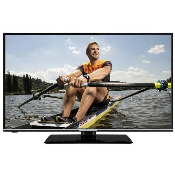Televize GoGEN TVF 43R552 STWEB černá