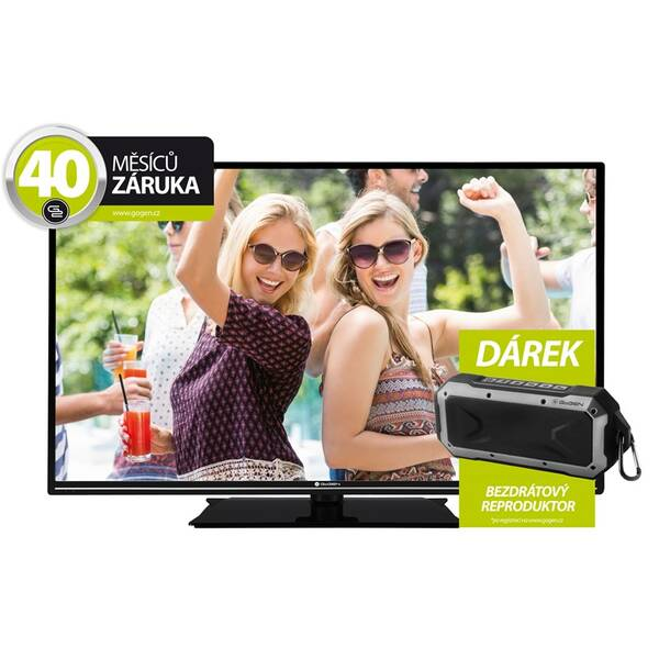 Televize GoGEN TVF 40R31 DE černá