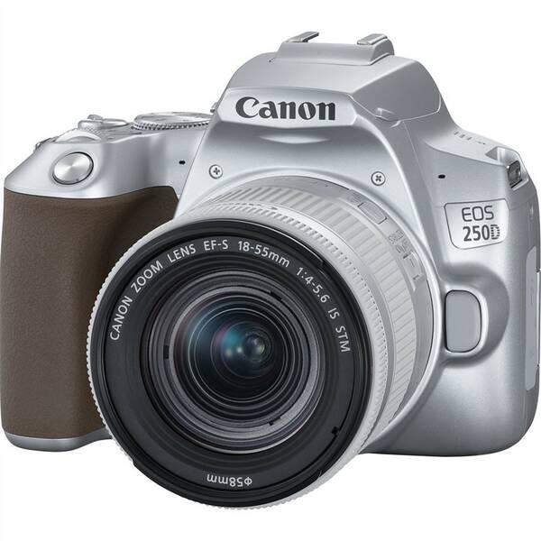 Digitální fotoaparát Canon EOS 250D + 18-55 IS STM (3461C001) stříbrný