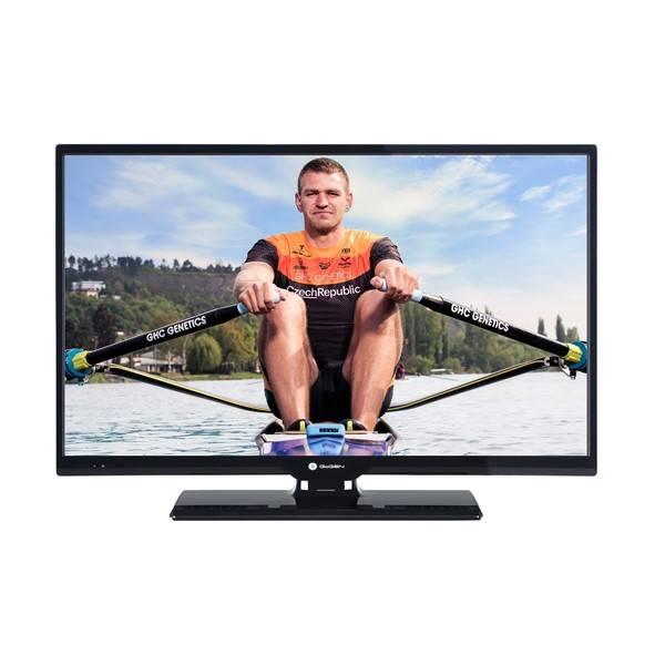Televize GoGEN TVH 28P266T černá