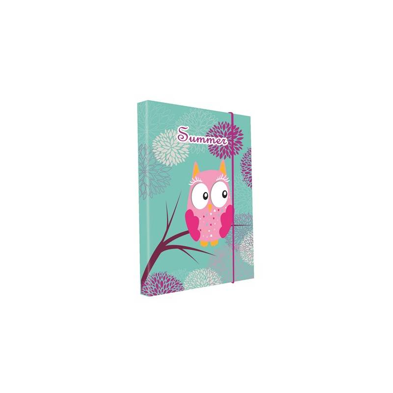 Dosky na zošity P + P Karton Owl/Sova Jumbo A4