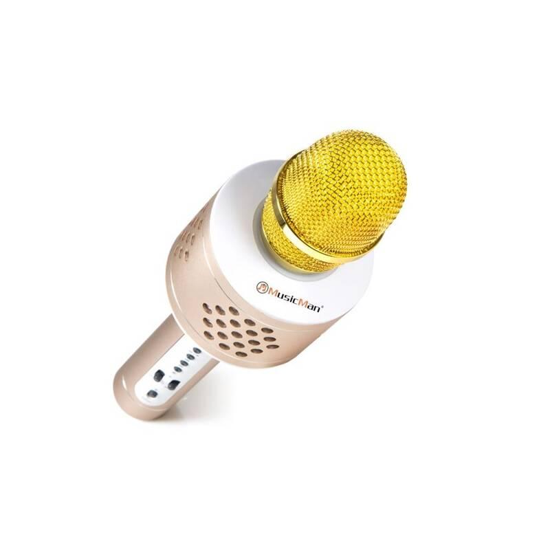 Prenosný reproduktor Technaxx BT-X35 s reproduktory a Bluetooth (4611) strieborný/zlatý