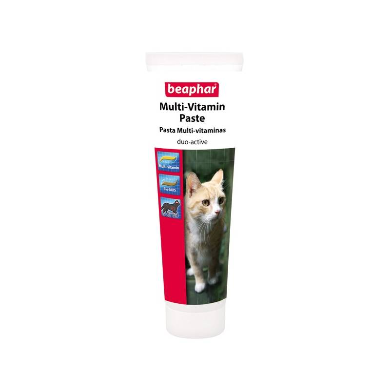 Multivitamínová pasta Beaphar Paste Duo Active Cat 100g