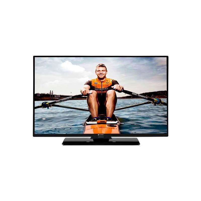 Televízor GoGEN TVH 24N384 STWEB čierna