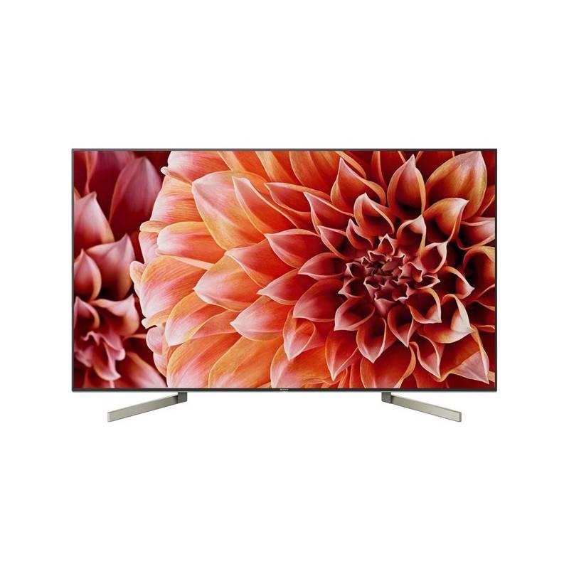 Televize Sony KD-65XF9005 černá