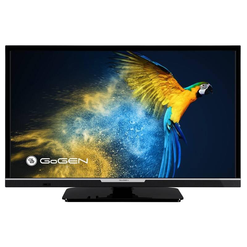 Televízor GoGEN TVH 24R552 STWEB čierna