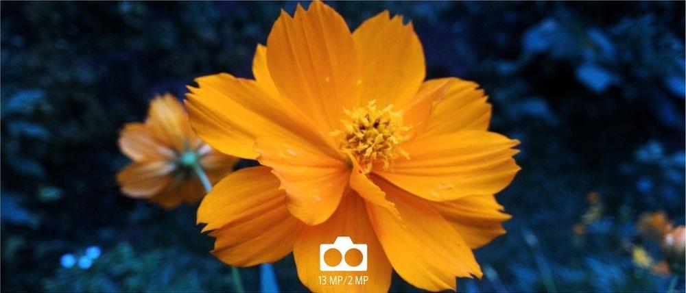 Fotografie s rozostřeným pozadím (bokeh efekt), vytvořená smartphonem Sony Xperia L3