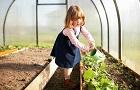 Ako prebudiť jarnú záhradu