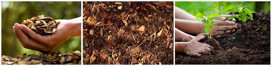 Kompost z lístia