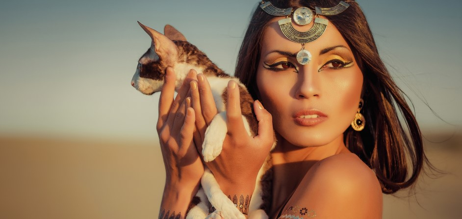 Egypt mačka