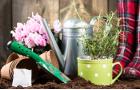 Zahradníkův rok - březen