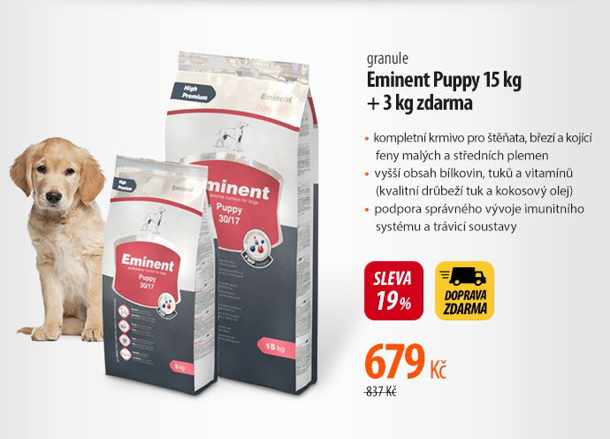 Granule Eminent Puppy