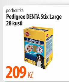 Pochoutka Pedigree Denta Stix Large