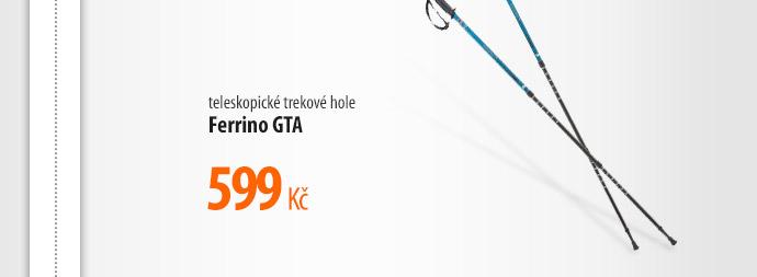 Teleskopické trekové hole Ferrino GTA